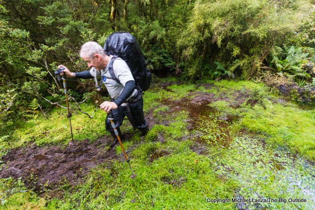 A hiker wading deep mud on the Dusky Track in New Zealand's Fiordland National Park.