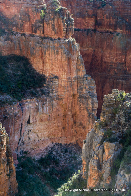 Along the North Kaibab Trail in the Grand Canyon.