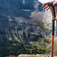Black Diamond Trail Ergo Cork trekking poles.