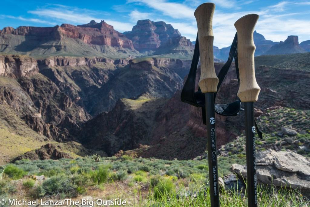 Gossamer Gear LT5 trekking poles.