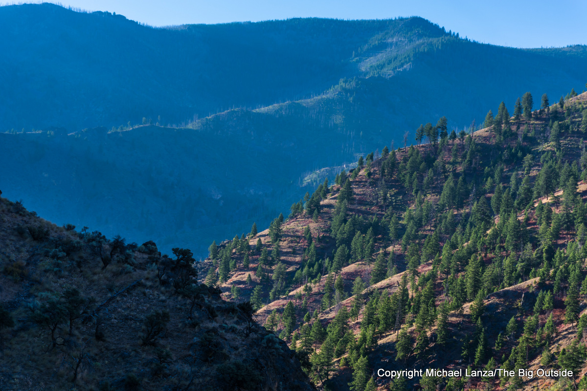 Mountains above Camas Creek on Idaho's Middle Fork Salmon River.