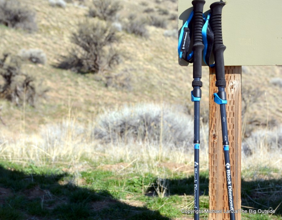 Black Diamond Distance Carbon FLZ poles.