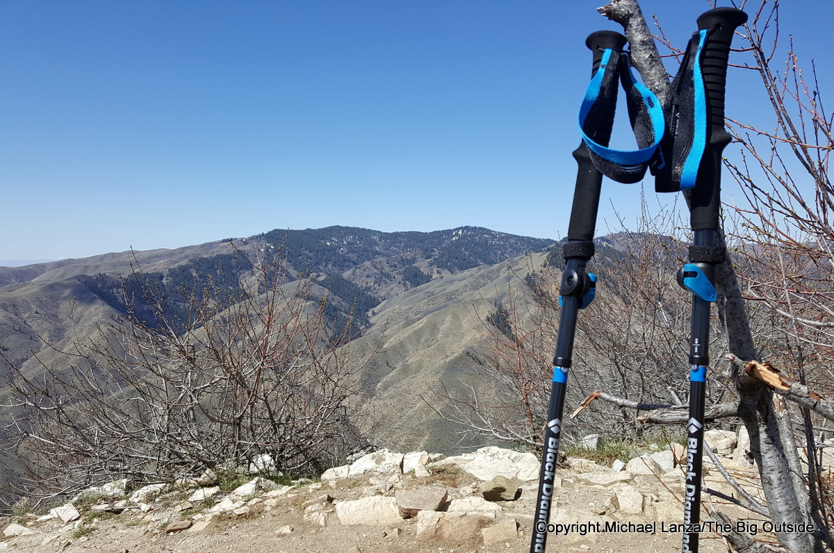 Black Diamond Distance Carbon FLZ trekking and running poles.