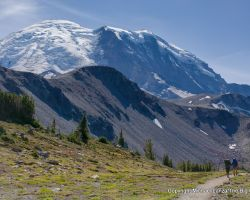 The Best Hikes in Mount Rainier National Park