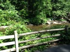 Running along the Wissahickon