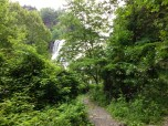 Waterfall peaking through the trees.