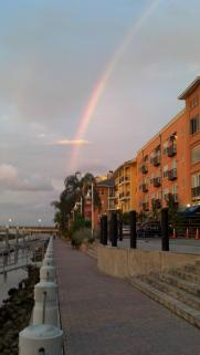 A rainbow in Tampa