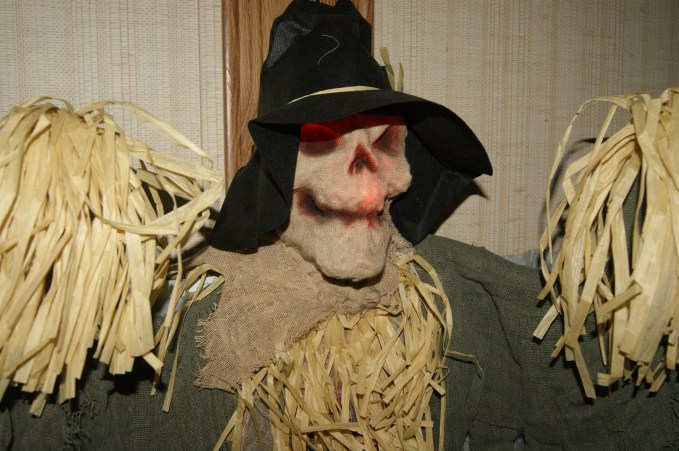 Creepy Lighted Scarecrow (Ross Dress for Less)