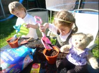 Ollie, Paige and teddy planting sunflower seeds