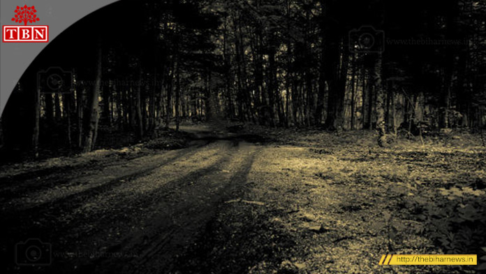 thebiharnews-in-most-haunted-highway-Besant-Avenue-Road