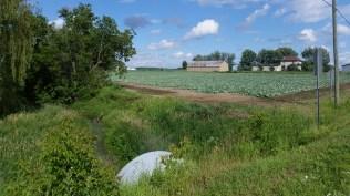 Local farmland. Ste. Roche D'Archigan, Quebec.