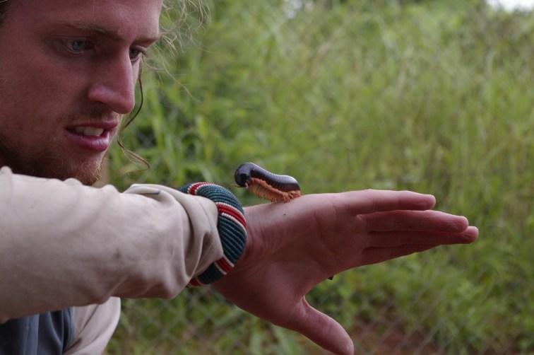 Im holding a millipied in Tanzania