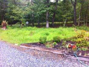 Stiltgrass garden, Sept. 2013