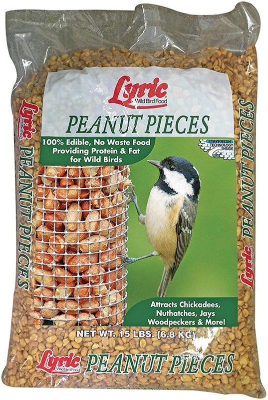 best bird seed