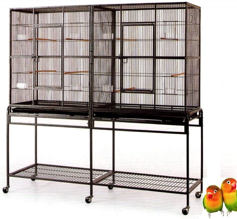 best parakeet cages