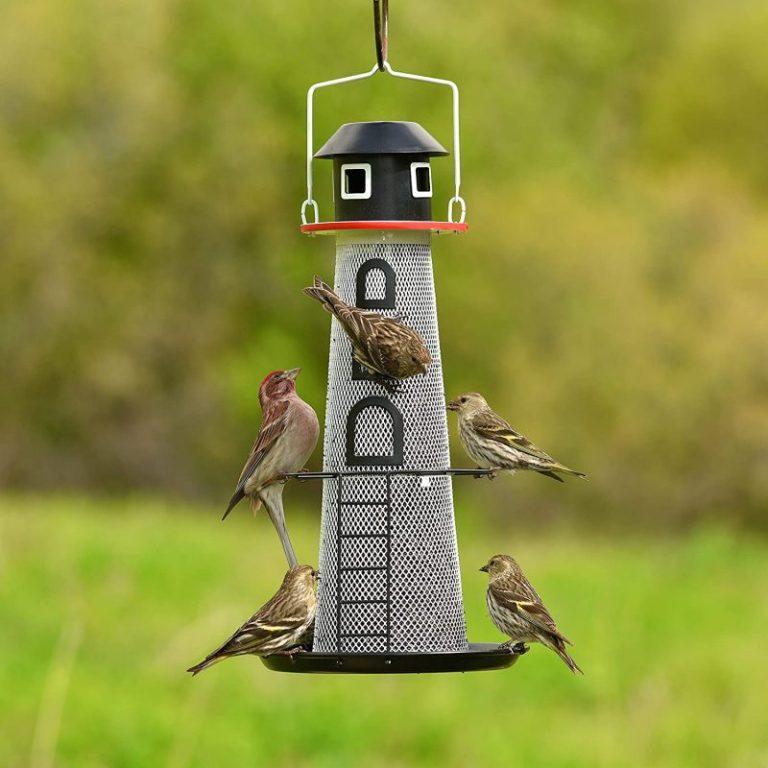 Perky-Pet LH00355 Solar Finch Bird Feeders