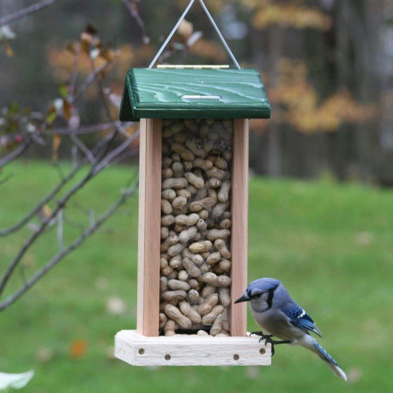 Birds Choice Whole Peanut Blue Jay Feeders with Green Roof