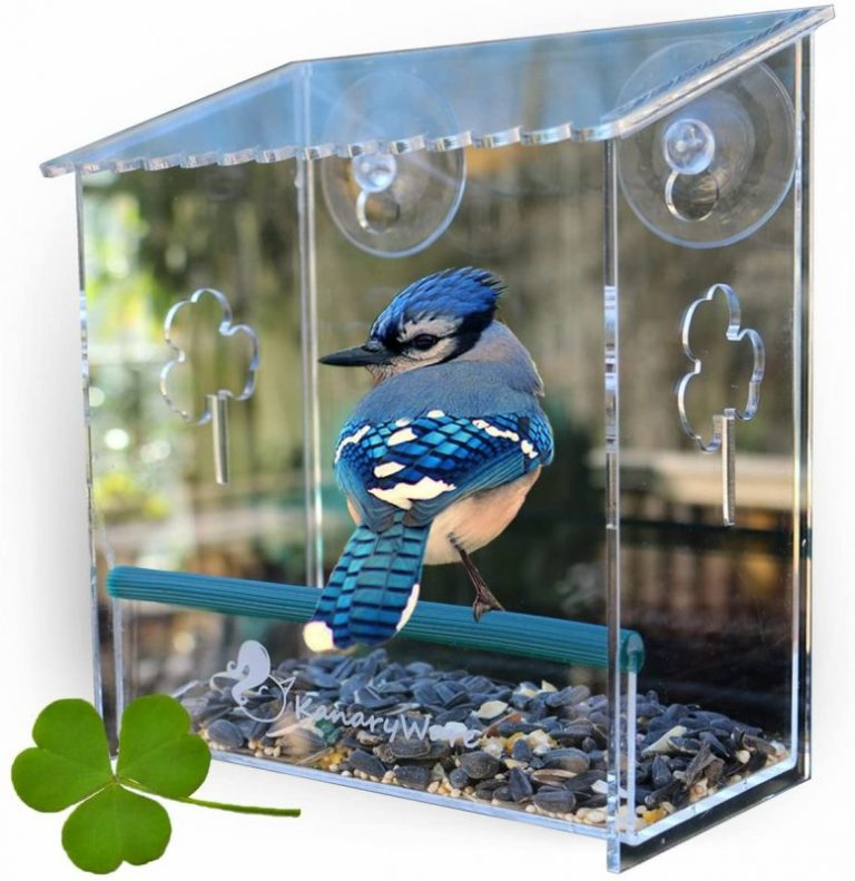Kanaryware Window Bird Feeder
