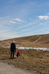 Glenridge Naturalization Site in Niagara Region