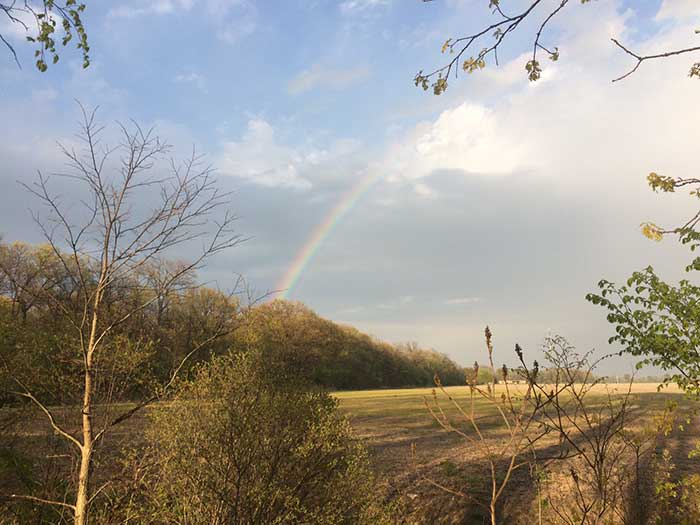 Rainbow Point Pelee