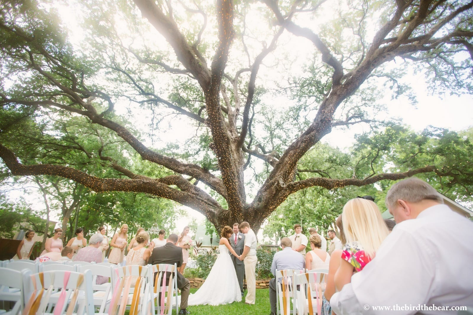 Oak Tree Manor Wedding  Kaitlin  Seth  The Bird  The