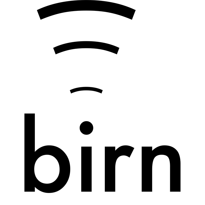 Join the BIRN! Come to our first meeting of the semester on June 3rd!