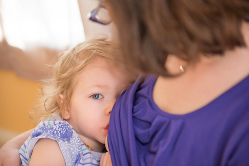 The birth center breastfeeding toddler