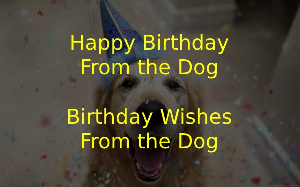 Happy Birthday From the Dog