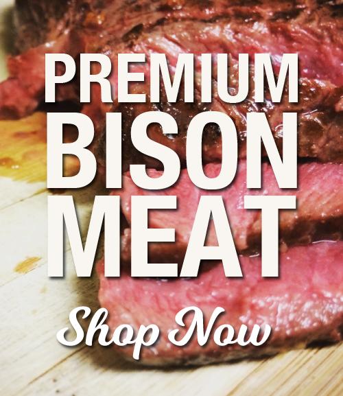 Bison Meat