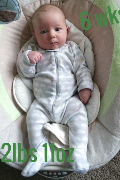 abel 6 weeks