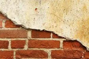 Disrepair and counterclaim