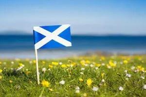 Scottish landlord performance