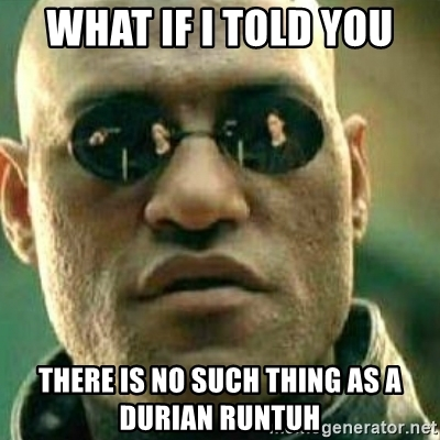 what-if-i-told-you-there-is-no-such-thing-as-a-durian-runtuh.jpg
