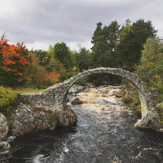 Photo of a tall, skinny, and very rounded stone bridge over a creek surrounded by trees