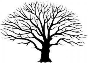tree « TheBlackberryAlarmclock.com
