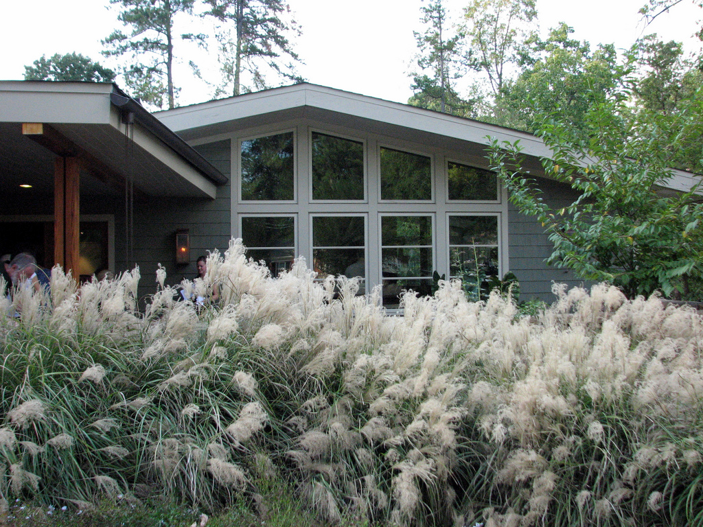 BobisTraveling Raleigh Modernist Home