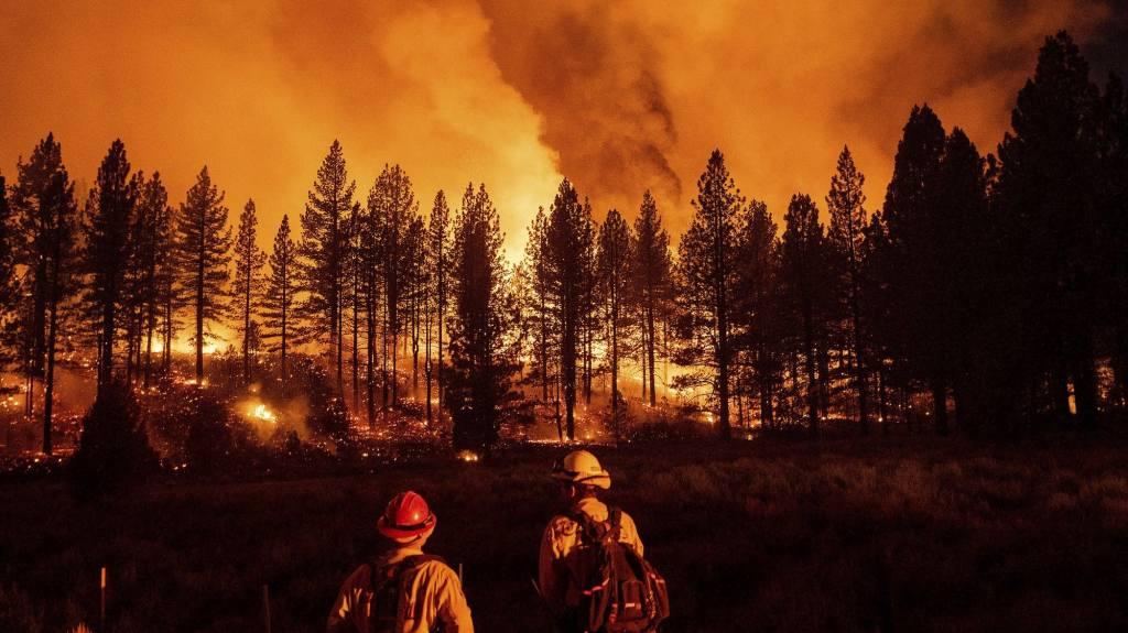 wildfire tribal
