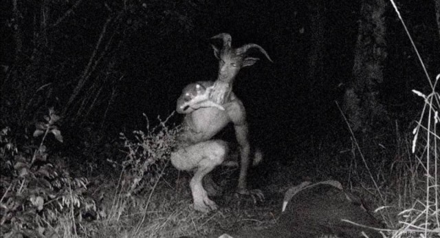 Urban legend Goatman avvistato in tre stati