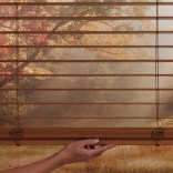 child safe blinds the blind spot littleton co (4)