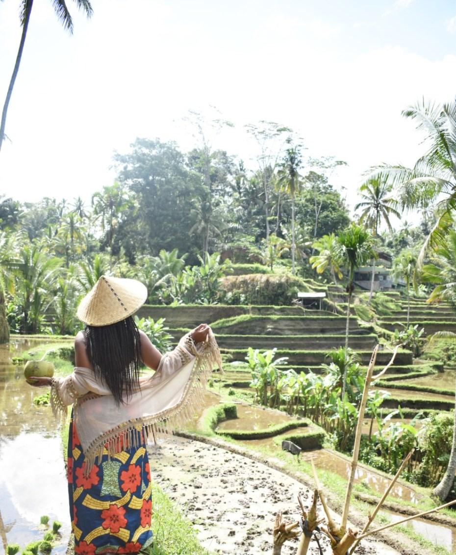 Tegalalang Rice Terrace | TheBlogAbroad.com