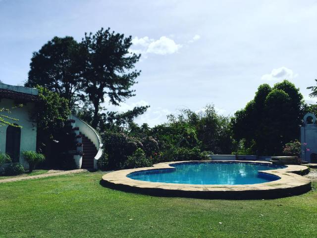 Pinto Art Museum's relaxing view