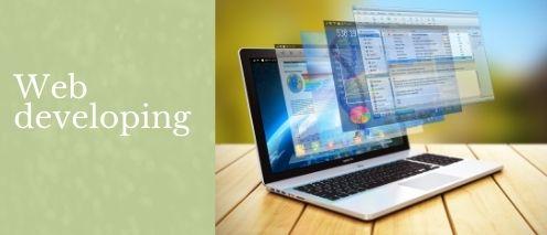 web developing make quick money