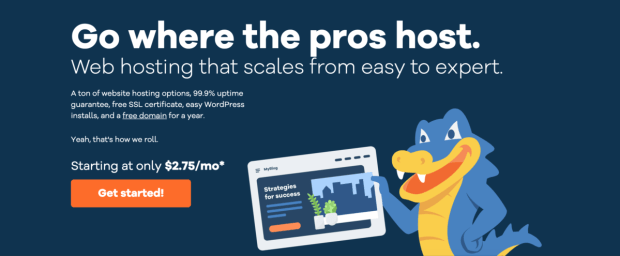 Purchasing Hosting For Your Blog Using Host Gator