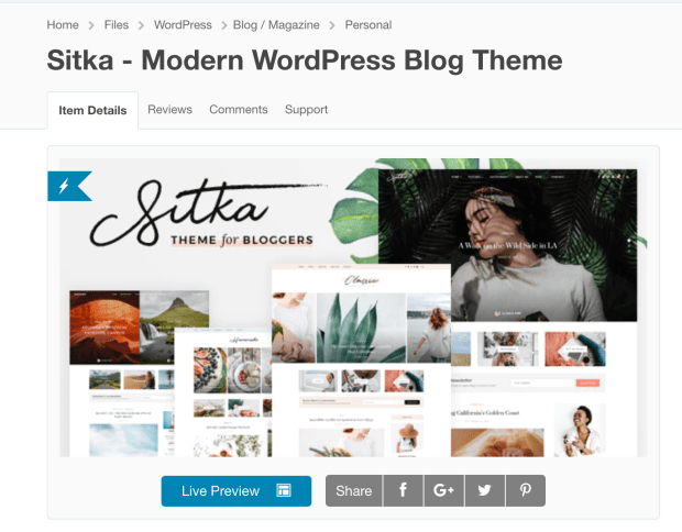 Best WordPress Theme For Bloggers