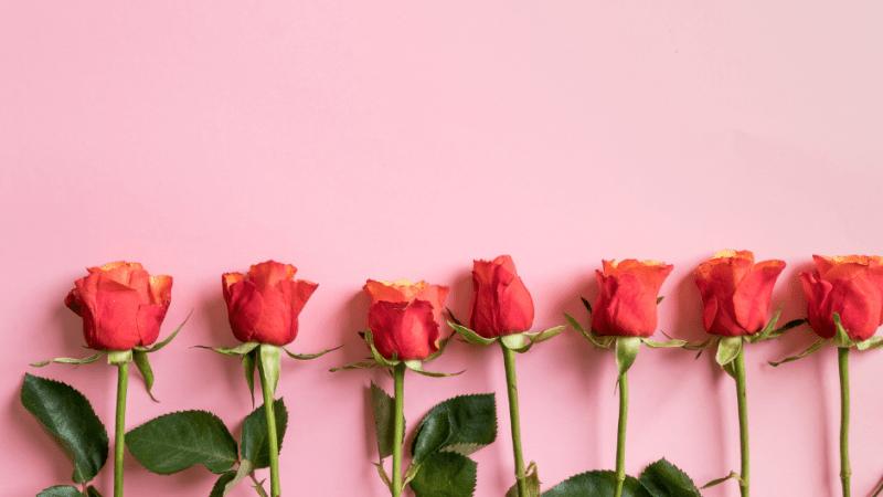 Essere più felice: le 7 virtù per ritrovare l'armonia interiore