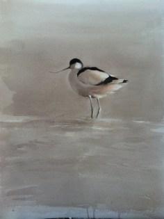 Avocets watercolor - Gunnar Tryggmo