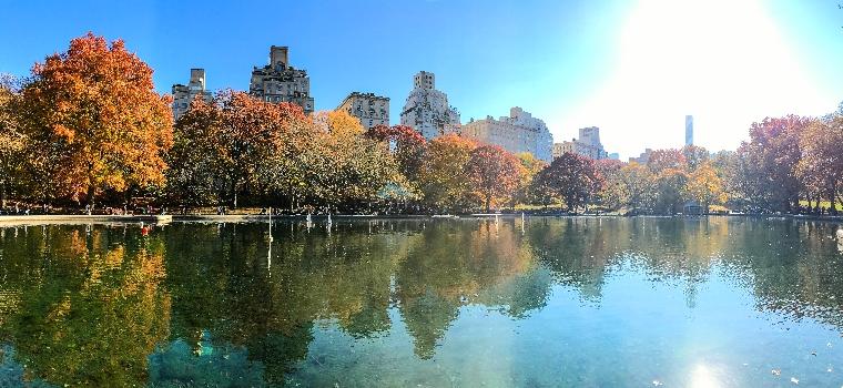 fall-in-new-york-november-2016