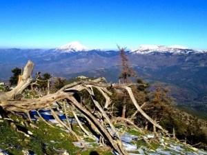 Όλυμπος Ευβοίας – Ελληνικά Βουνά