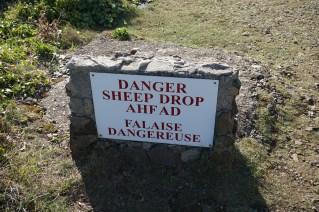 Sheep drop, Sark