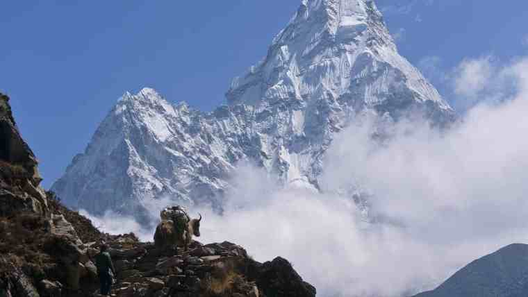 highest peak Mount Everest